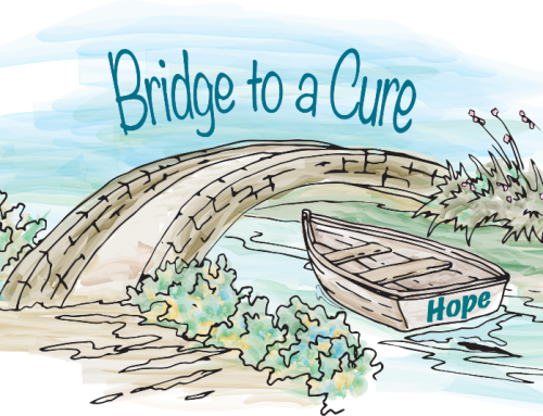 Breaking down barriers, bridging to a cure